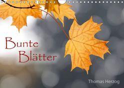 Bunte Blätter (Wandkalender 2019 DIN A4 quer) von Herzog,  Thomas, www.bild-erzaehler.com