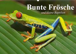 Bunte Frösche und kleine Reptilien (Wandkalender 2019 DIN A2 quer) von Stanzer,  Elisabeth