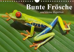 Bunte Frösche und kleine Reptilien (Wandkalender 2019 DIN A4 quer) von Stanzer,  Elisabeth