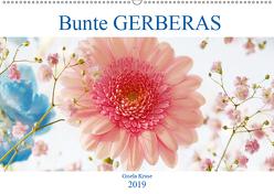 Bunte Gerberas (Wandkalender 2019 DIN A2 quer) von Kruse,  Gisela