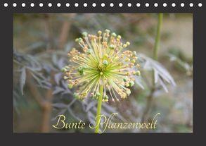 Bunte Pflanzenwelt (Tischkalender 2018 DIN A5 quer) von Rott,  Cordt