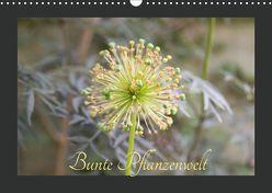 Bunte Pflanzenwelt (Wandkalender 2019 DIN A3 quer) von Rott,  Cordt