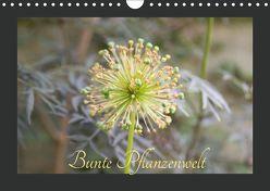 Bunte Pflanzenwelt (Wandkalender 2019 DIN A4 quer) von Rott,  Cordt