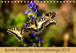 Bunte Pracht der Schmetterlinge (Tischkalender 2019 DIN A5 quer) von Blickwinkel,  Dany´s