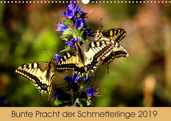Bunte Pracht der Schmetterlinge (Wandkalender 2019 DIN A3 quer) von Blickwinkel,  Dany´s