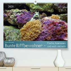 Bunte Riffbewohner – Fische, Anemonen und noch viel mehr (Premium, hochwertiger DIN A2 Wandkalender 2020, Kunstdruck in Hochglanz) von Schumann,  Bianca