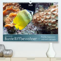 Bunte Riffbewohner – Fische, Anemonen und noch viel mehrCH-Version (Premium, hochwertiger DIN A2 Wandkalender 2020, Kunstdruck in Hochglanz) von Schumann,  Bianca