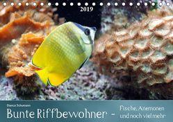 Bunte Riffbewohner – Fische, Anemonen und noch viel mehrCH-Version (Tischkalender 2019 DIN A5 quer) von Schumann,  Bianca