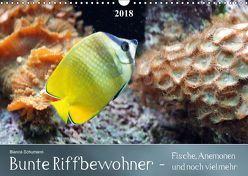 Bunte Riffbewohner – Fische, Anemonen und noch viel mehrCH-Version (Wandkalender 2018 DIN A3 quer) von Schumann,  Bianca