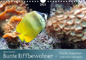 Bunte Riffbewohner – Fische, Anemonen und noch viel mehrCH-Version (Wandkalender 2021 DIN A4 quer) von Schumann,  Bianca