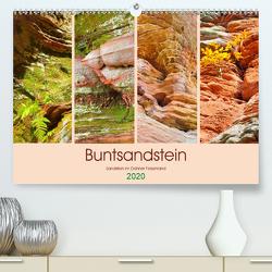 Buntsandstein – Sandstein im Dahner Felsenland (Premium, hochwertiger DIN A2 Wandkalender 2020, Kunstdruck in Hochglanz) von LianeM