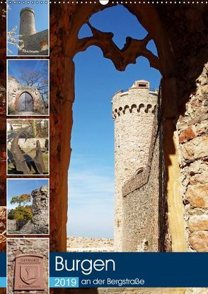 Burgen an der Bergstraße (Wandkalender 2019 DIN A2 hoch) von Andersen,  Ilona