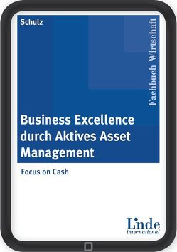 Business Excellence durch Aktives Asset Management von Schulz,  Edwin
