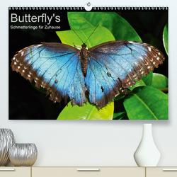 Butterfly's – Schmetterlinge für Zuhause (Premium, hochwertiger DIN A2 Wandkalender 2021, Kunstdruck in Hochglanz) von Bade,  Uwe