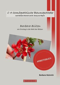C4-homöopathische Baumapotheke nach Barbara Heinrich und Dr. Georg von Pilgrim / C4-homöopathische Baumapotheke von Heinrich,  Barbara