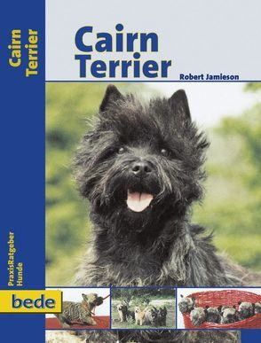 Cairn Terrier von Jamieson,  Robert