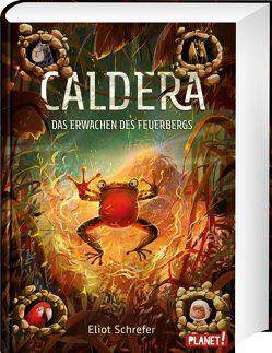 Caldera 3: Das Erwachen des Feuerbergs von Dziubak,  Emilia, Köbele,  Ulrike, Schrefer,  Eliot
