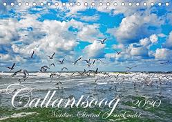Callantsoog ~ Nordsee, Strand und mehr (Tischkalender 2020 DIN A5 quer) von Wehrle,  Lorenz