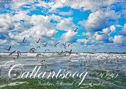 Callantsoog ~ Nordsee, Strand und mehr (Wandkalender 2020 DIN A3 quer) von Wehrle,  Lorenz