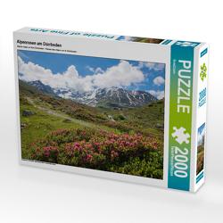 CALVENDO Puzzle Alpenrosen am Dürrboden 2000 Teile Lege-Größe 90 x 67 cm Foto-Puzzle Bild von SusaZoom