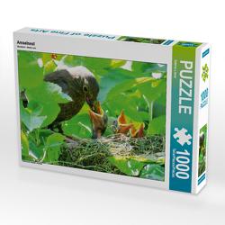 CALVENDO Puzzle Amselnest 1000 Teile Lege-Größe 64 x 48 cm Foto-Puzzle Bild von Sabine Löwer