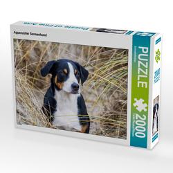 CALVENDO Puzzle Appenzeller Sennenhund 2000 Teile Lege-Größe 90 x 67 cm Foto-Puzzle Bild von SchnelleWelten