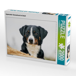 CALVENDO Puzzle Appenzeller Sennenhund im Detail 2000 Teile Lege-Größe 90 x 67 cm Foto-Puzzle Bild von SchnelleWelten