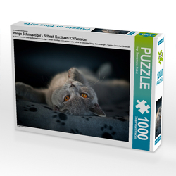 CALVENDO Puzzle Bärige Schmusetiger – Britisch Kurzhaar / CH-Version 1000 Teile Lege-Größe 64 x 48 cm Foto-Puzzle Bild von Inge Zimmermann-Probst