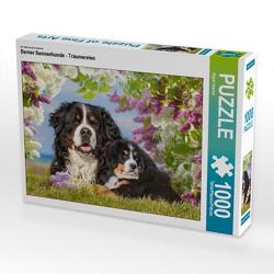 CALVENDO Puzzle Berner Sennenhunde – Träumereien 1000 Teile Lege-Größe 64 x 48 cm Foto-Puzzle Bild von Sigrid Starick
