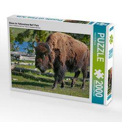 CALVENDO Puzzle Bison im Yellowstone Nat'l Park 2000 Teile Lege-Größe 90 x 67 cm Foto-Puzzle Bild von Dieter-M. Wilczek