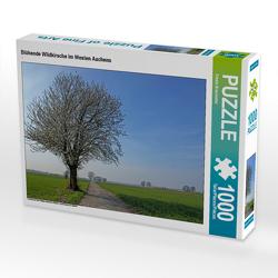 CALVENDO Puzzle Blühende Wildkirsche im Westen Aachens 1000 Teile Lege-Größe 64 x 48 cm Foto-Puzzle Bild von Gisela Braunleder