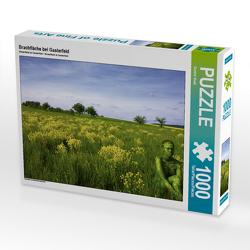 CALVENDO Puzzle Brachfläche bei Gasterfeld 1000 Teile Lege-Größe 64 x 48 cm Foto-Puzzle Bild von Gunter Best