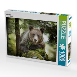 CALVENDO Puzzle Braunbär 1000 Teile Lege-Größe 64 x 48 cm Foto-Puzzle Bild von Johann Schörkhuber