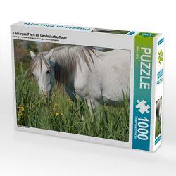 CALVENDO Puzzle Camargue-Pferd als Landschaftspfleger 1000 Teile Lege-Größe 64 x 48 cm Foto-Puzzle Bild von Meike Bölts