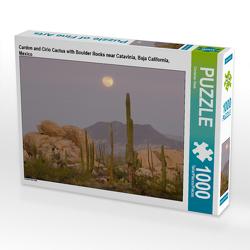 CALVENDO Puzzle Cardon and Cirio Cactus with Boulder Rocks near Catavinia, Baja California, Mexico 1000 Teile Lege-Größe 64 x 48 cm Foto-Puzzle Bild von Christian Heeb