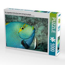 CALVENDO Puzzle Der Augenfleck-Doktorfisch lässt sich gerne putzen! 1000 Teile Lege-Größe 64 x 48 cm Foto-Puzzle Bild von Ute Niemann