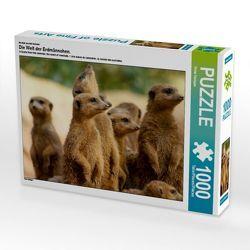 CALVENDO Puzzle Die Welt der Erdmännchen 1000 Teile Lege-Größe 64 x 48 cm Foto-Puzzle Bild by Peter Hebgen
