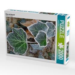 CALVENDO Puzzle Efeu mit Raureif 2000 Teile Lege-Größe 67 x 90 cm Foto-Puzzle Bild von Sabine Löwer