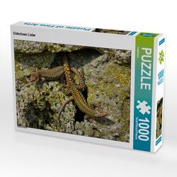 CALVENDO Puzzle Eidechsen Liebe 1000 Teile Lege-Größe 64 x 48 cm Foto-Puzzle Bild von Kattobello