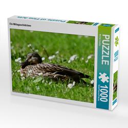CALVENDO Puzzle Ein Mittagsschläfchen 1000 Teile Lege-Größe 64 x 48 cm Foto-Puzzle Bild von Marlise Gaudig