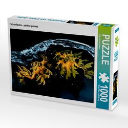 CALVENDO Puzzle Fetzenfische – perfekt getarnt 1000 Teile Lege-Größe 64 x 48 cm Foto-Puzzle Bild von Heinz Schmidbauer