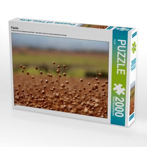 CALVENDO Puzzle Flachs 2000 Teile Lege-Größe 90 x 67 cm Foto-Puzzle Bild von Flori0