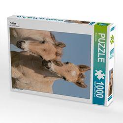 CALVENDO Puzzle Fohlen 1000 Teile Lege-Größe 48 x 64 cm Foto-Puzzle Bild von Meike Bölts