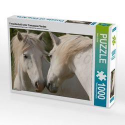 CALVENDO Puzzle Freundschaft unter Camargue-Pferden 1000 Teile Lege-Größe 64 x 48 cm Foto-Puzzle Bild von Meike Bölts