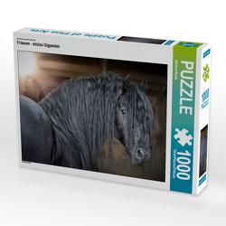 CALVENDO Puzzle Friesen – stolze Giganten 1000 Teile Lege-Größe 64 x 48 cm Foto-Puzzle Bild von Martina Wrede
