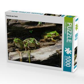 CALVENDO Puzzle Frösche am Teich 1000 Teile Lege-Größe 64 x 48 cm Foto-Puzzle Bild von Anette Jäger und Mimi