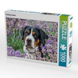 CALVENDO Puzzle Frühling im Beet 1000 Teile Lege-Größe 64 x 48 cm Foto-Puzzle Bild von SchnelleWelten
