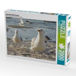 CALVENDO Puzzle Ganz Nah Silbermöwen 2000 Teile Lege-Größe 90 x 67 cm Foto-Puzzle Bild von Tanja Riedel