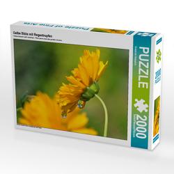 CALVENDO Puzzle Gelbe Blüte mit Regentropfen 2000 Teile Lege-Größe 90 x 67 cm Foto-Puzzle Bild von Susanne Herppich