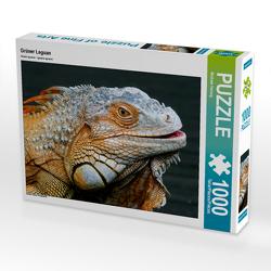 CALVENDO Puzzle Grüner Leguan 1000 Teile Lege-Größe 64 x 48 cm Foto-Puzzle Bild von Michael Herzog